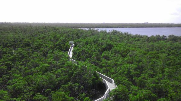 Trung tâm thiên nhiên Anne Kolb, nơi có nhiều loài thực vật bản địa và động vật hoang dã có nguy cơ tuyệt chủng sinh sống - Ảnh: flickr