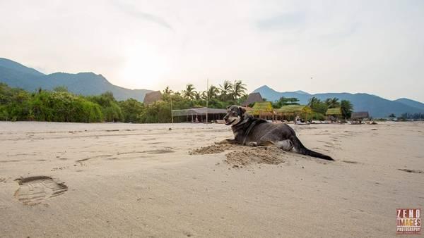 Tận hưởng bình yên ở Jungle Beach. Ảnh: Zeno
