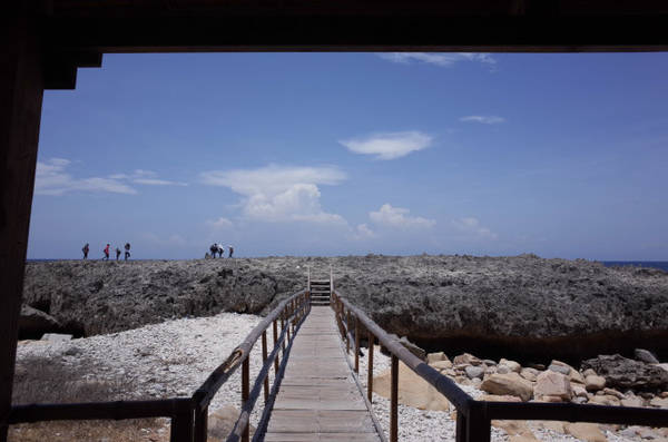 Cây cầu gỗ đơn sơ giúp du khách tiếp cận với quần thể đá cổ dễ dàng hơn - Ảnh: HUYỀN TRANG