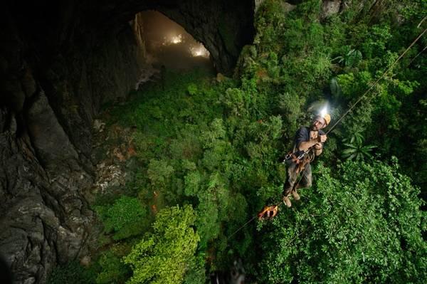 Trần hang có hai hố sụt lớn, giúp ánh sáng mặt trời và nước mưa lọt qua, tạo ra một khu rừng với hệ động thực vật độc đáo. Ảnh: Carsten Peter.