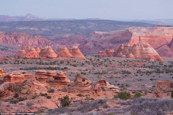 Khu vực Nam Coyote Buttes ở Utah trong ánh bình minh.