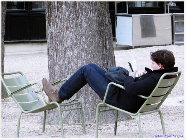Chàng trai đọc sách trong vườn Luxembourg giữa một buổi chiều êm ả - Ảnh: Kim Ngân