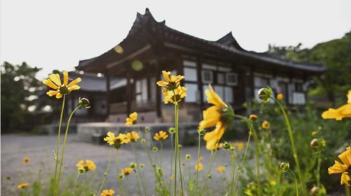 Không khí ở trà quán bình yên đến nao lòng do được bao quanh bởi vùng trang trại và công viên quốc gia Songnisan.
