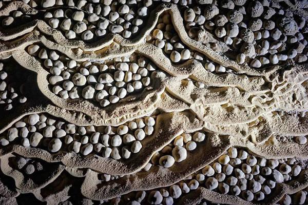 Trong hang có nhiều Rổ Trứng được hình thành do nước chảy tràn và nước trên trần rơi xuống khiến các viên canxi carbonate lăn tròn tạo thành những ổ trứng, khiến du khách cứ như lạc vào hang động của đàn khủng long nào đó.