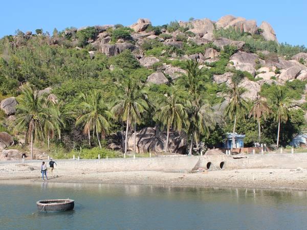 Hàng dừa xanh mướt làm cho làng Bãi Ngang càng trở nên thơ mộng. Ảnh: Kua