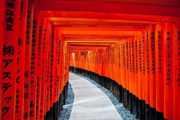 Có rất nhiều giả thuyết khác nhau về sự ra đời của những cánh cổng Torii. Có ý kiến cho rằng Torii của Nhật Bản bắt nguồn từ Torana - những cánh cổng được xây dựng tại đền thờ Hindu ở Ấn Độ. Đầu tiên, chúng được sử dụng bởi các tín đồ Phật giáo sau đó mới du nhập vào Nhật Bản. Trong khi đó, nghiên cứu khác lại nghiêng về giả thuyết Trung Quốc mới là nguồn gốc thực sự của Torii. Điều này được cho là bởi vì cổng Torii rất giống với các cổng chào (Pailou) ở Trung Quốc ở hình dáng, màu sắc và cả vị trí đặt tại nơi linh thiêng để đánh dấu ranh giới. Các đền Sandō thờ thần Inari rất phổ biến ở Nhật và thường có lối vào được tạo thành bởi hàng trăm chiếc cổng Torii dựng san sát nhau. Hầu hết trong số đó được quyên tặng bởi các gia đình thương nhân để tỏ lòng biết ơn thần linh đã giúp cho công việc kinh doanh của họ suôn sẻ, thuận lợi. Đặc biệt, tại đền thờ Fushimi Inaritaisha ở Kyoto còn có lối vào được xây dựng bởi hàng nghìn chiếc cổng Torii. Trên mỗi chiếc cổng này đều ghi thời gian và họ tên của người quyên tặng.