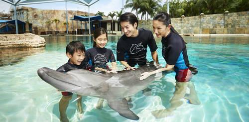 Địa chỉ: Dolphin Island, 8 Sentosa Gateway, Sentosa. Ảnh: STB