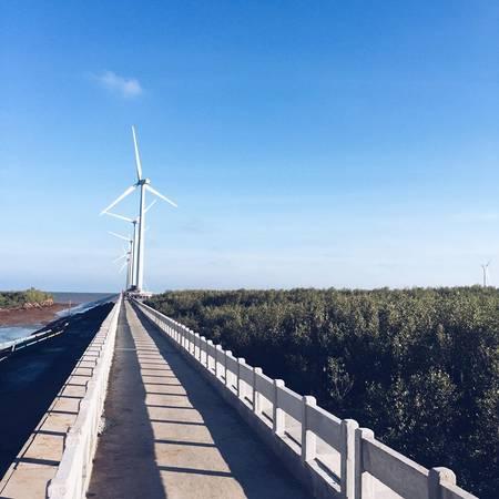 Một con đường dẫn ra tham quan những chiếc quạt gió. Ảnh: Long Nguyễn