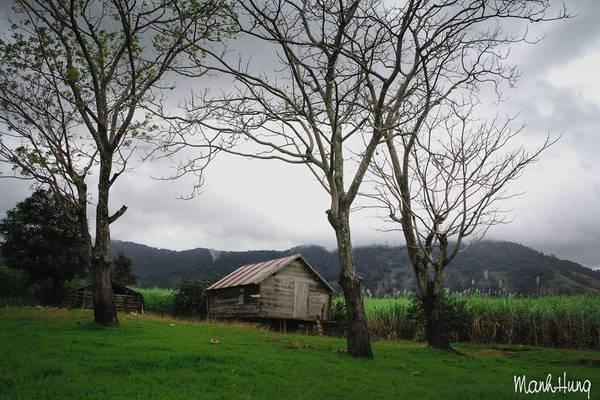 Ngôi nhà đơn sơ tựa lưng vào núi.