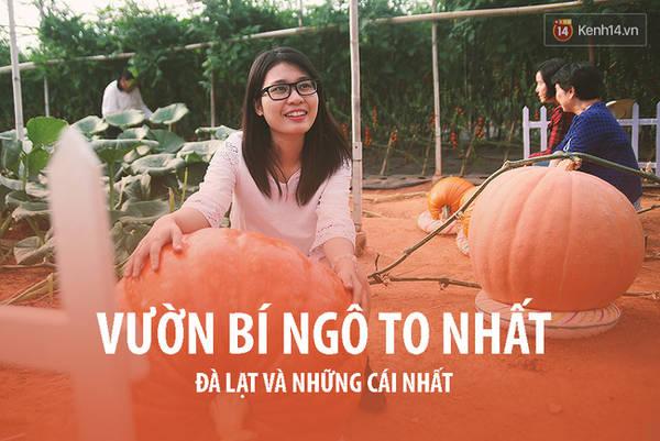 da-lat-noi-ma-ban-chang-the-ngo-co-vo-van-nhung-cai-nhat-ivivu-28