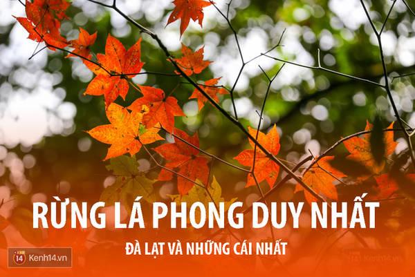 da-lat-noi-ma-ban-chang-the-ngo-co-vo-van-nhung-cai-nhat-ivivu-4