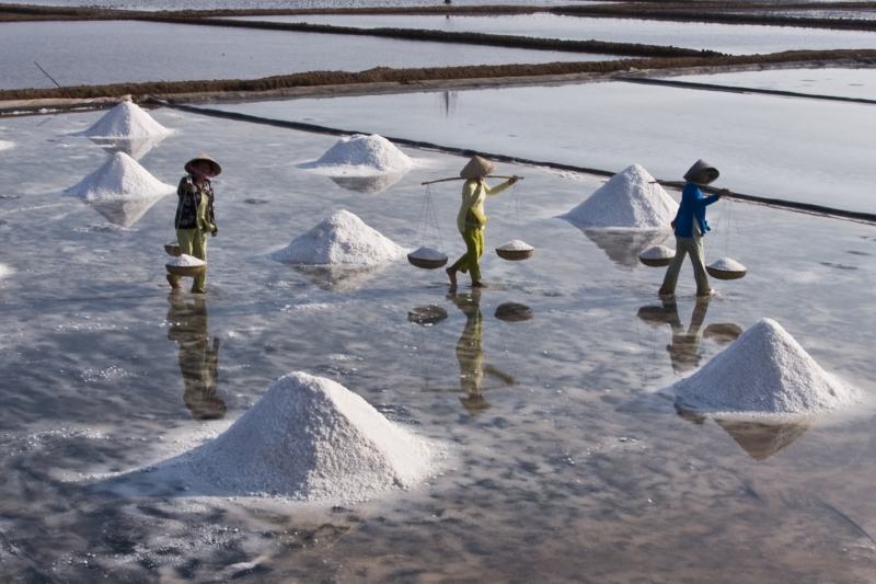 Bạc Liêu có hai huyện làm muối đó là huyện Hòa Bình và Đông Hải. Ảnh: saigonphoto.net