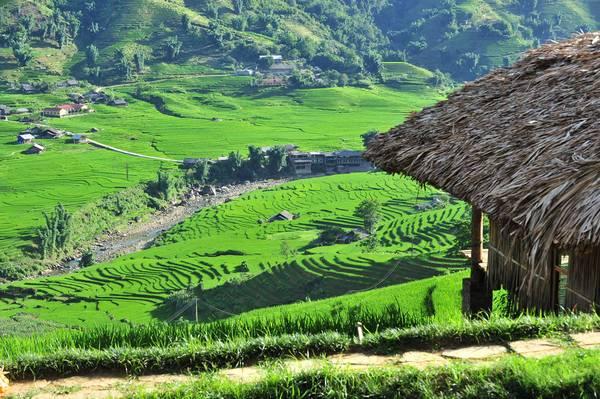 Cảnh đồi núi ở Sa Pa - Lào Cai