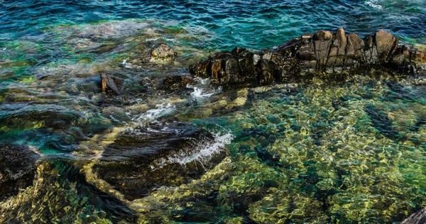 """Nếu như những hình ảnh về bãi san hô rộng lớn, nhấp nhô, lóng lánh dưới làn nước xanh ngọc trong vắt như pha lê đã khiến bạn trầm trồ, phải đặt chân tới đây, bạn mới thực sự cảm thấy mình may mắn vì được tận mắt chứng kiến một cảnh sắc độc đáo. Nếu thích tắm dưới làn nước mát và trong veo, bạn nên trang bị đồ bơi, vì ở đây có những """"hồ nước"""" thiên nhiên từ san hô rất lý tưởng. Bạn nên đến đây vào lúc bình minh hay hoàng hôn, vì lúc này, khung cảnh nơi đây mới thật sự phô bày hết sự quyến rũ của nó."""