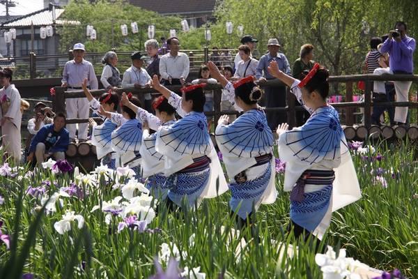 Từ xưa, hoa diên vĩ (còn có tên là hoa xương bồ, hoa lay ơn) được mọi người yêu mến, coi là loài hoa báo hiệu Nhật Bản đã vào thời gian đầu hè.