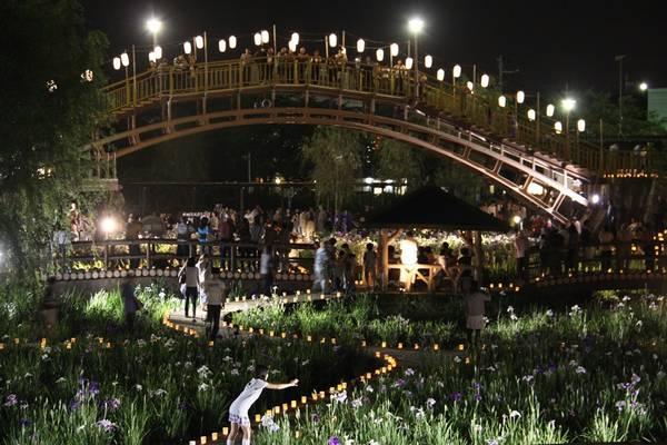 Vào ban đêm, công viên được trang trí lộng lẫy, nhưng vẫn thanh lịch, duyên dáng.