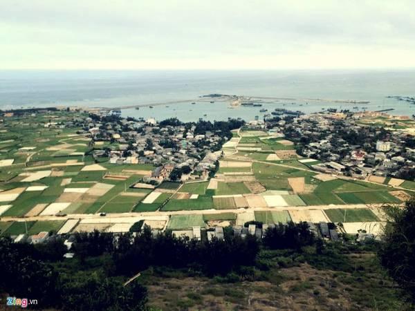 Những cánh đồng hành bạt ngàn xen lẫn những ngôi nhà nhỏ bé của cư dân thôn Đông.