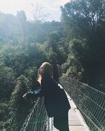 Một cây cầu treo ở Măng Đen. Ảnh: ms.sathy