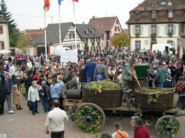 Lễ hội rượu vang ở làng Marlenheim - Ảnh: wp