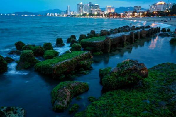 Một cây cầu rêu trở lên lung linh khi thành phố biển bắt đầu lên đèn - Ảnh: Tiến Thành