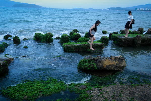 Bạn trẻ bước trên những tảng đá phủ đầy rêu - Ảnh: Tiến Thành