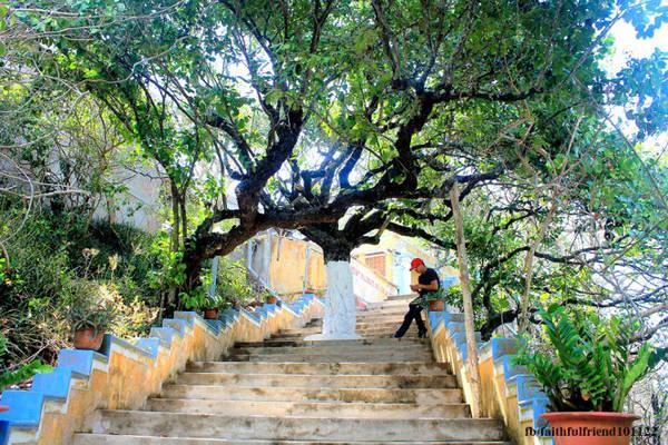 Những rừng cây đại thụ bạt ngàn đã bao phủ ngôi cổ tự bằng sắc màu xanh ngắt, tạo thêm nét huyễn hoặc cho chốn thâm nghiêm. Ngoài khơi xa, đại dương mênh mông cũng một màu trong xanh