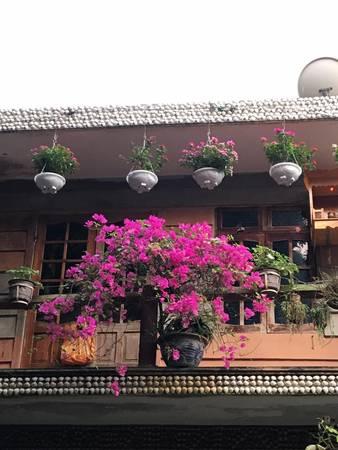 Đặc biệt trong khuôn viên nhà hàng có vô số cây cỏ, hoa lá như tô điểm thêm cho vẻ đẹp nơi đây. Ảnh: Facebook khu du lịch sinh thái Bảy Ban