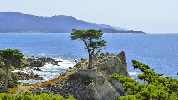 Đường 17-Mile, California: Tuyến đường 17-Mile trải dọc bán đảo Monterey, đưa du khách qua những khu rừng Del Monte, các vách đá hùng vĩ với đàn hải cẩu ồn ào. Bạn còn có cơ hội chiêm ngưỡng hoàng hôn tuyệt đẹp trên Thái Bình Dương. Ảnh: Lovelystuffaccordingtome/Wordpress.