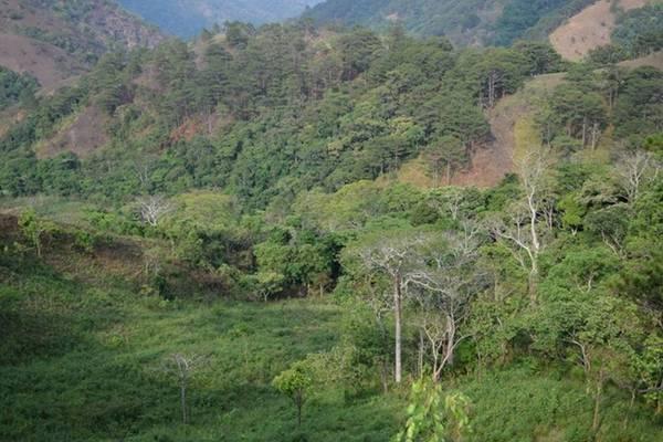 Núi rừng hùng vĩ của cung đường Tà Năng - Phan Dũng