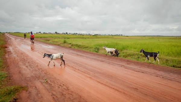 Con đường đất đỏ sau trận mưa tại xã Cư Kbang, huyện Ea Súp, Đắk Lắk - Ảnh: TIẾN THÀNH
