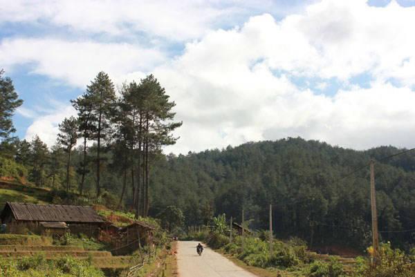 Con đường dẫn vào Suối Giàng yên bình với những ngôi nhà nhỏ bên thuở ruộng bậc thang của bà con H'Mong. Ảnh: Vũ Ngọc Khánh