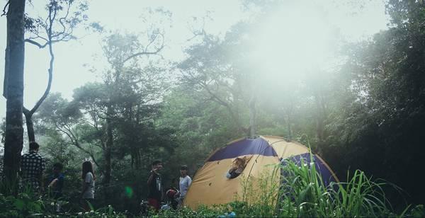 Cắm trại trong rừng cũng là một trong những điều vô cùng thú vị và đáng nhớ. Tuy nhiên, bạn phải lưu ý chỉ được hạ trại tại những nơi mà Ban quản lý cho phép và tuyệt đối không được xả rác, đốt lửa.