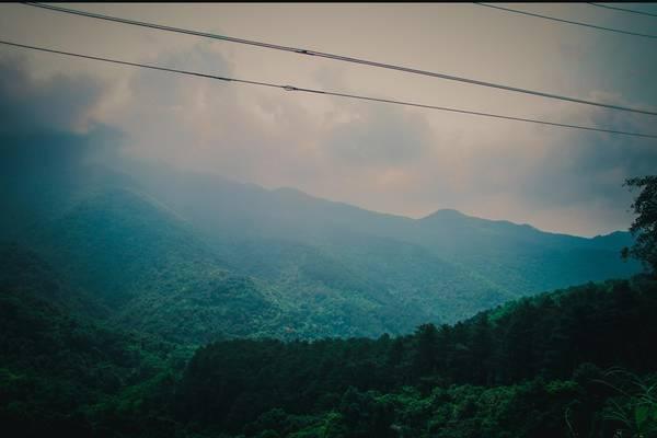 Vườn quốc gia Tam Đảo là một địa điểm nghỉ mát tuyệt vời trong những ngày hè oi ả. Hãy đến và cảm nhận vẻ đẹp như cổ tích của khu rừng nguyên sinh bồng bềnh mây phủ.