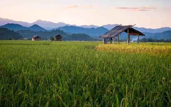 Phong cảnh đẹp và không khí trong lành ở Nam Ha. Ảnh: Roughguides Phong cảnh đẹp và không khí trong lành ở Nam Ha. Ảnh: Roughguides