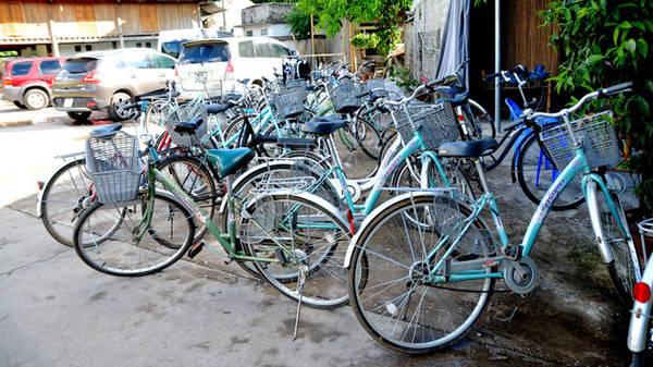 Xe đạp dành cho du khách thuê - Ảnh: Phạm Tô Chiêm