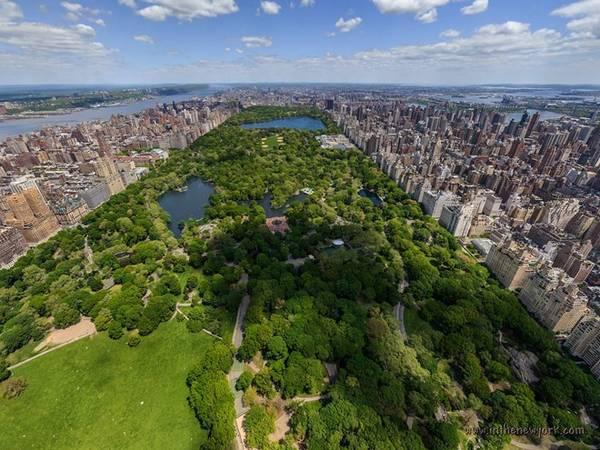 Công viên Central Park như lá phổi xanh của New York. Ảnh: Pinterest.