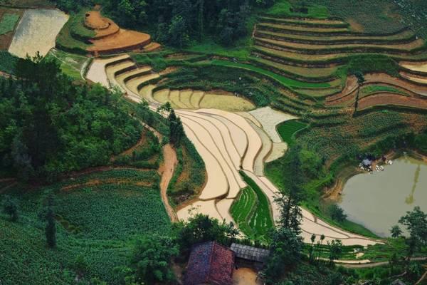Ruộng bậc thang Lũng Cú vào mùa nước đổ.