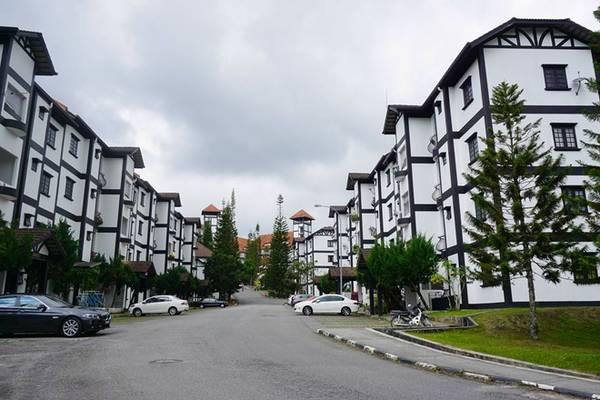 Tôi đến Cameron Highlands bằng xe buýt từ Penang. Thời gian di chuyển khoảng 4 tiếng. Vừa đến nơi, tôi ngỡ ngàng vì phong cảnh vùng cao nguyên này quá tuyệt vời.