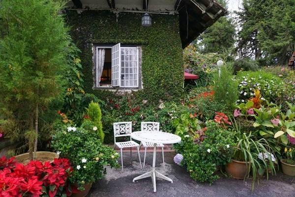 Có nhiều nơi để đến ở Cameron Highlands, nhưng bạn nhất định phải ghé Smokehouse - nhà hàng phục vụ các món ăn tuyệt vời cùng trà chiều kiểu Anh.