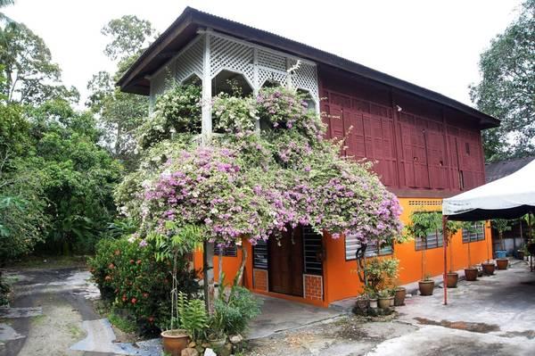 Thị trấn Balik Pulau tọa lạc ở thung lũng phía nam của đảo Penang. Đây là nơi tập trung sinh sống của người Malaysia theo đạo Hồi. Nhà cửa vẫn giữ nét truyền thống theo kiểu nhà sàn, hoa văn chạm trổ trên những cửa gỗ sắc sảo, mang màu nâu bóng. Balik Pulau mang hình ảnh một vùng quê thanh bình với những thửa ruộng xanh ngát và làng chài có từ lâu đời.