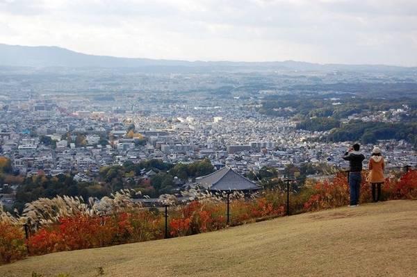 Nara là thành phố thuộc tỉnh Nara, Nhật Bản, đồng thời là cố đô của đất nước hoa anh đào đến năm 784. Nơi đây được khách du lịch yêu thích nhờ những giá trị truyền thống mang đậm sắc màu thời gian cùng nhiều lễ hội văn hóa nghệ thuật đặc sắc. Một trong số đó là lễ hội đốt núi Wakakusa. Ảnh: Jessica.