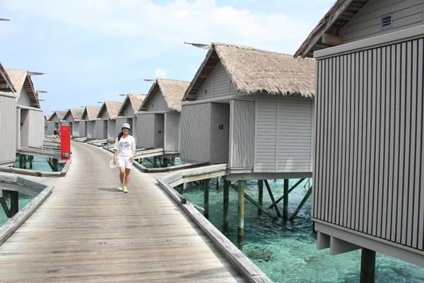 Centara Ras Fushi là nơi tổ chức những đám cưới trong mơ dành cho bạn. Ngoài ra tại đây còn có những villa trên mặt biển - sang trọng và riêng tư tuyệt đối.