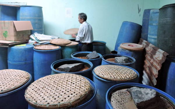 Cá muối được cho vào phuy, đậy nắp thật kín, đưa vào phòng khô ráo - Ảnh: Thanh Ly