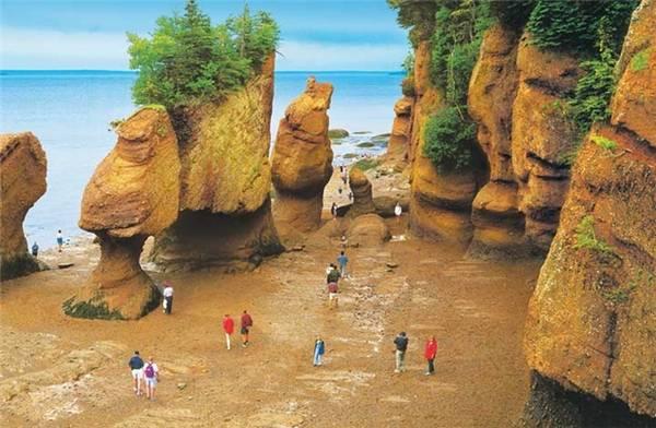 Vịnh Fundy khi nước cạn