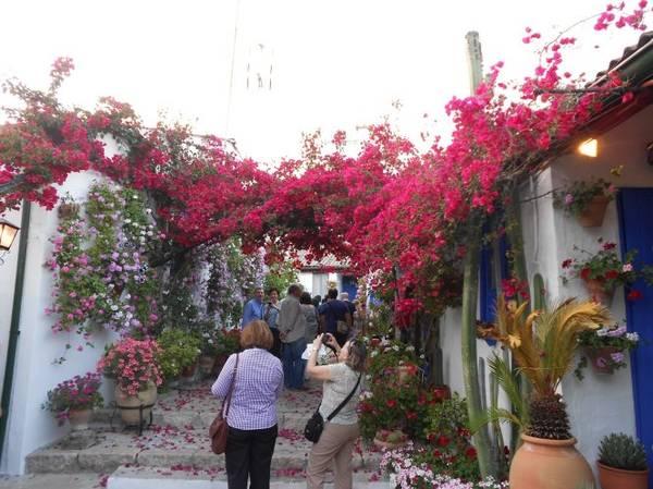 Một con phố điển hình vùng Andalusia - Ảnh: blogspot