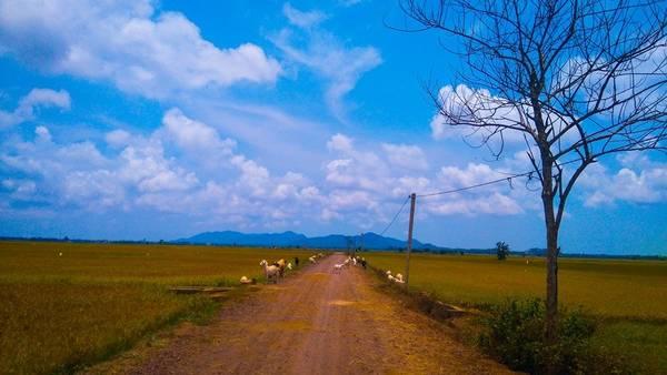 tu-phuong-that-dao-ivivu-14