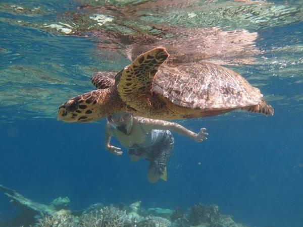Lặn ống thở hay lặn bằng bình oxy để khám phá thế giới muôn màu trong lòng biển. Ảnh: Maldives thiên đường hạ giới.