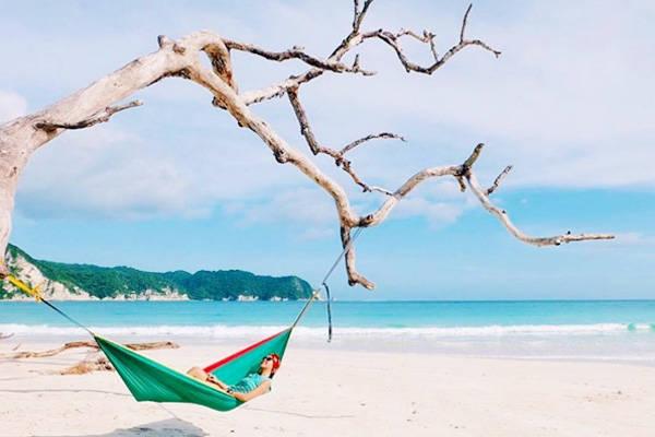 Bãi biển ở đây xanh và rất sạch sẽ. Giữa bờ cát trắng tinh có một cây khô được rất nhiều du khách lựa chọn để chụp ảnh. Ảnh: Instagram.