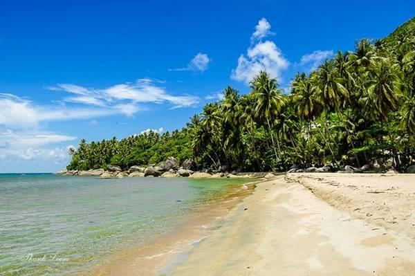 Đảo được bao quanh bởi những rặng dừa ngút ngàn, chạy dọc theo bờ biển mang một dáng vẻ hoang sơ, chưa có dấu vết của sự khai phá.