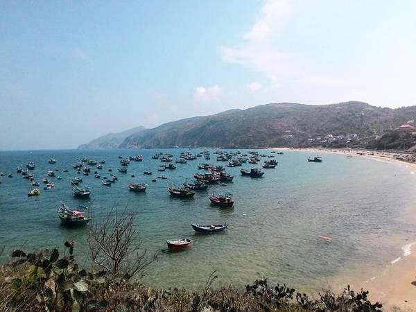 Ngày hai, chúng tôi lên đường thăm làng chài Nhơn Lý, làng chài gây ấn tượng mạnh bởi vẻ đẹp hoang sơ. Dọc đường đi, bạn sẽ bắt gặp những đồi cát trải dài ngút ngàn khiến bạn dễ liên tưởng đến những đồi cát ở Bình Thuận.